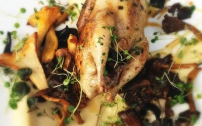 Norfolk Quail, Celeriac and Wild Mushrooms