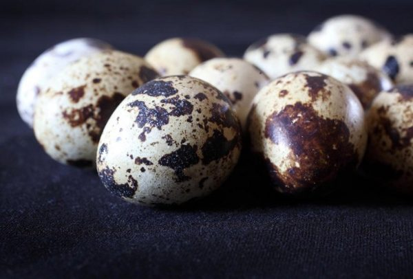 Norfolk Quail Eggs